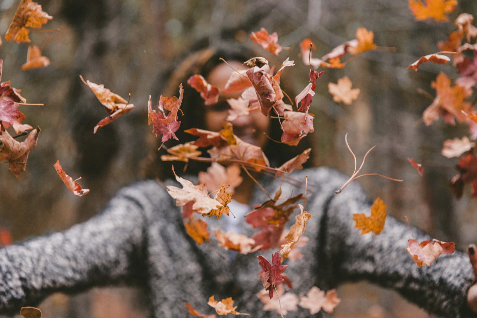 Andrea Sternberg Blogpost Herbst
